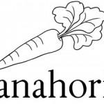 Zanahoria es una palabra con h intercalada