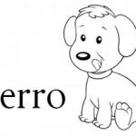 Perro es una palabra con cinco letras